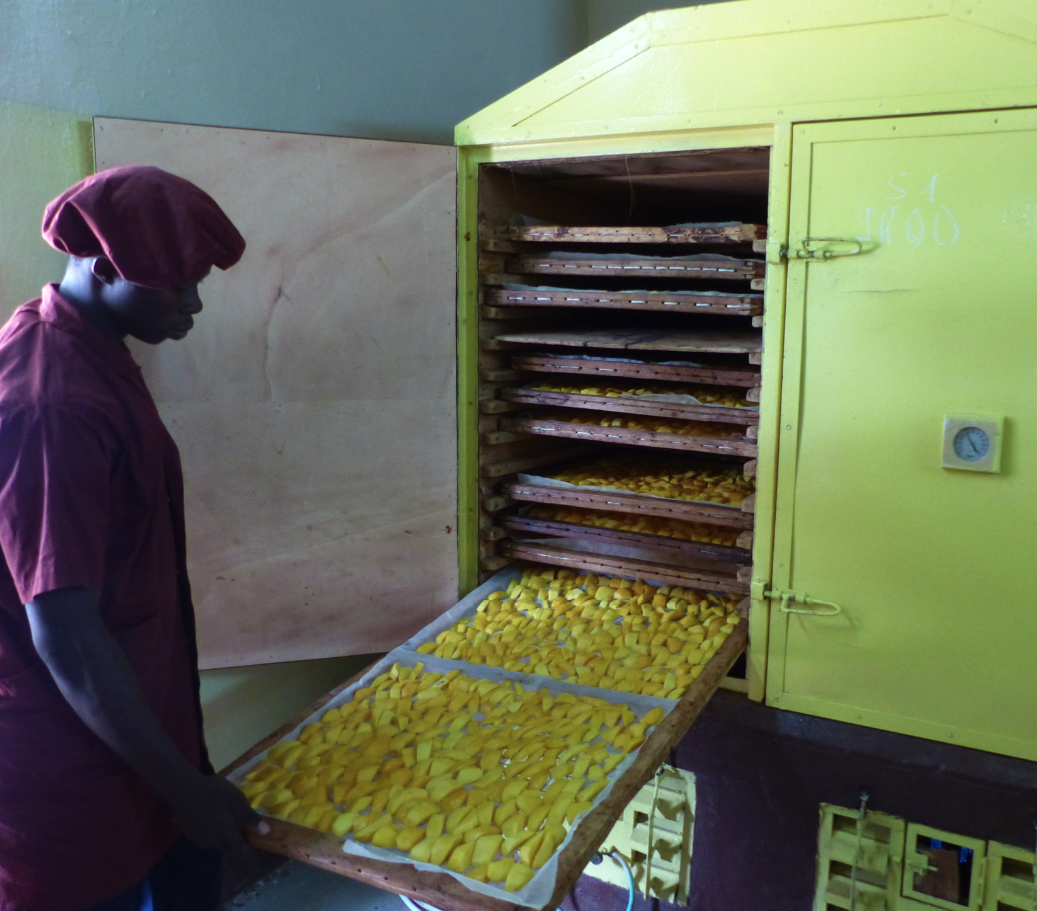 COOPAKE-mangue-sechee-bio-equitable-ethiquable