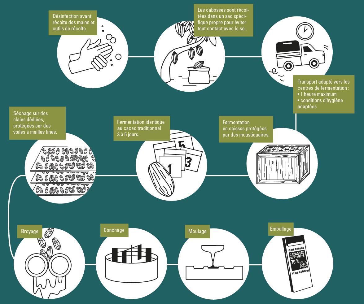 infographie cacao cru fabrication