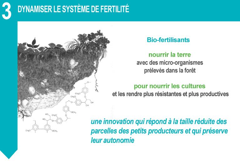 dynamiser le systeme de fertilite