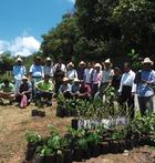 coopérative Miel Néctar Mazatecos mexique ethiquable